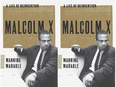 malcolm_x_by_marable_0
